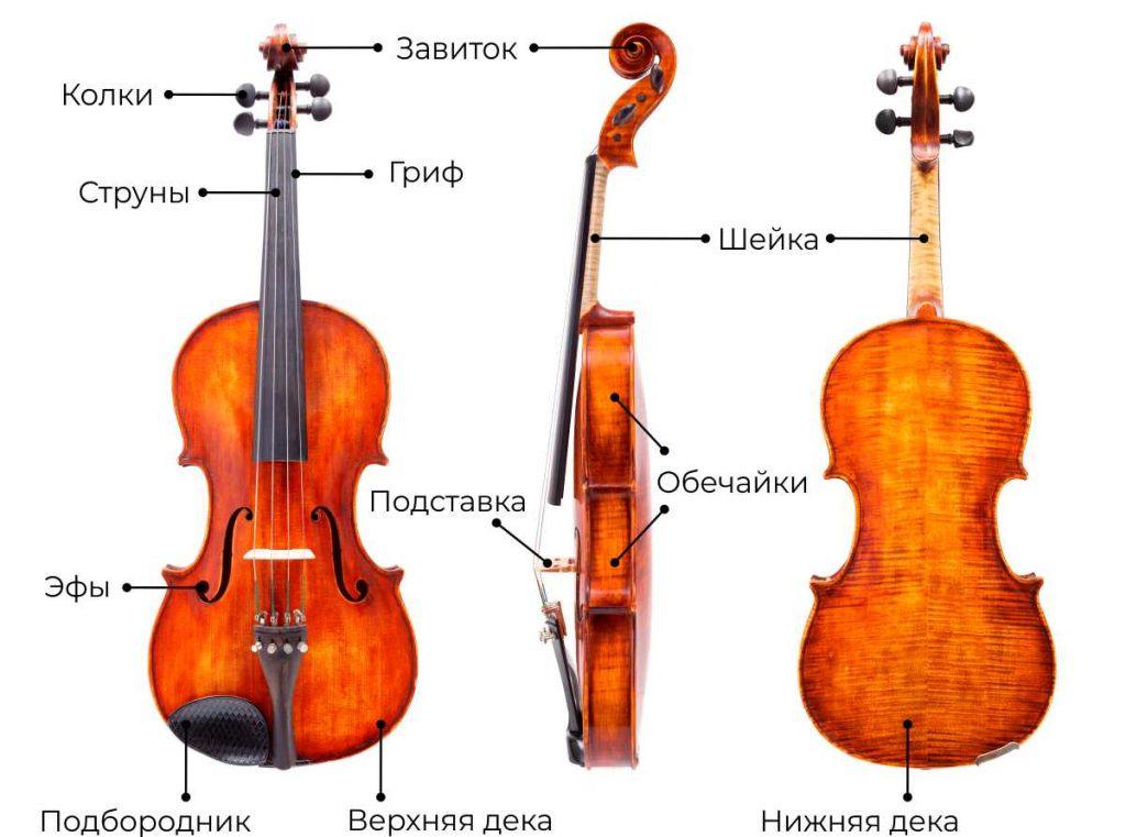 Как устроена скрипка